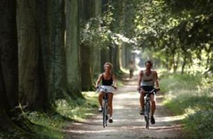 Doet u mee aan de fiets-4daagse in Otterlo? Kom overnachten bij De Roek!